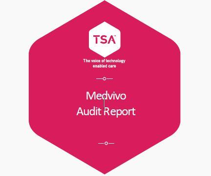 TSA audit icon